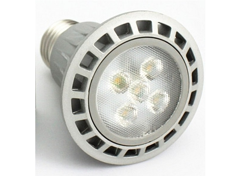 E27 / PAR 20 LED Spotlights